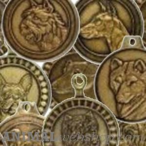Rashonden Hondenpenningen bij AnimalWebshop.com met naam