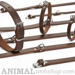 Leren halsbanden bij AnimalWebshop.com Hondenpenning.net HETDIER.nl 1