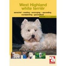 Over Dieren OD west highalnd white terrier bij Hondenpenning.net HETDIER.nl en Amigos en AnimalWebshop